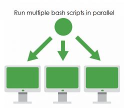 How to run multiple bash scripts in parallel | TechieRoop